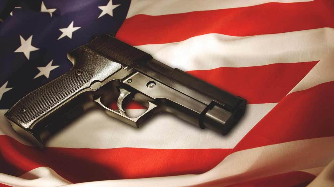 Image result for Gun Violence